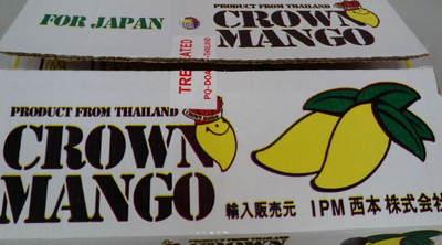 タイマンゴ3.JPG